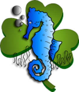 Sea horse shamrock