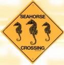 Seahorse Crossing